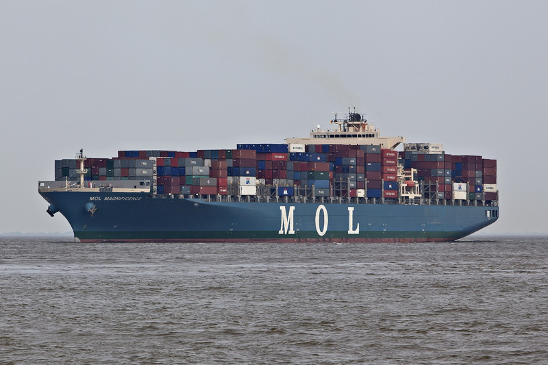 Mol magnificence   9424900   03081101