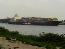 MSC KERRY